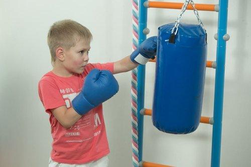 Купить боксерскую грушу для детей в Рязани